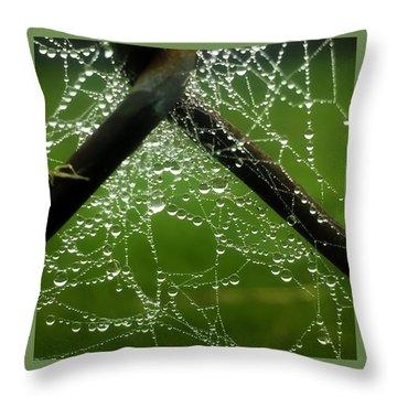 Lit Web Throw Pillow