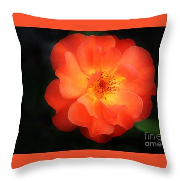 Lite Up Throw Pillow