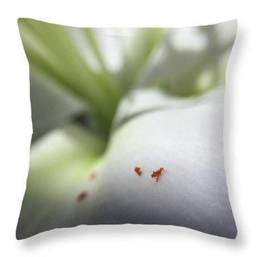 Little Alps Throw Pillow