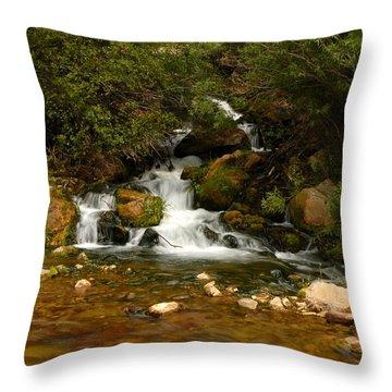 Little Big Creek Throw Pillow