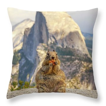 Little, Big Squirrel Throw Pillow
