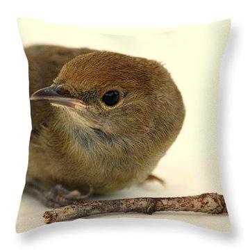 Little Bird 2 Throw Pillow