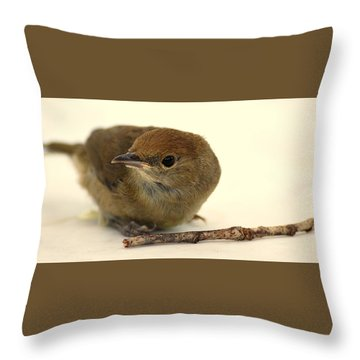 Little Bird 2 Throw Pillow