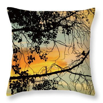 Throw Pillow featuring the photograph Little Birdie Told Me So by James BO Insogna