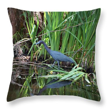 Little Blue Heron Throw Pillow