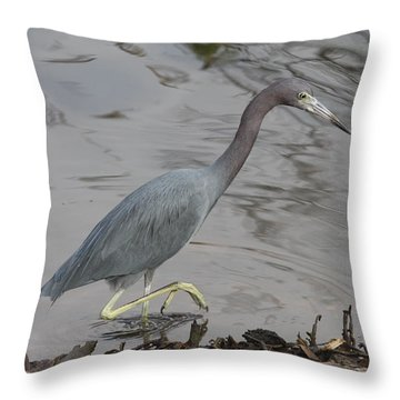 Throw Pillow featuring the photograph Little Blue Heron Walking by Christiane Schulze Art And Photography