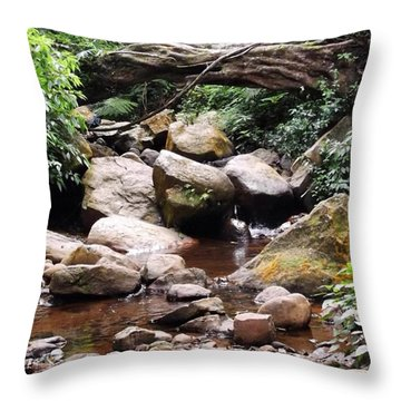 Bubbling Stream Throw Pillow