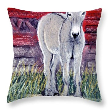 Little Donkey Throw Pillow by Jan Amiss