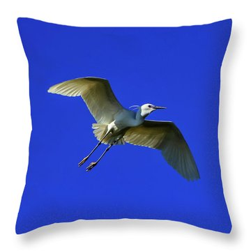 Little Egret, Egretta Garzetta Throw Pillow