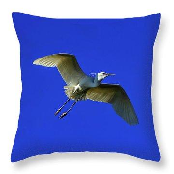 Little Egret, Egretta Garzetta Throw Pillow by Elenarts - Elena Duvernay photo