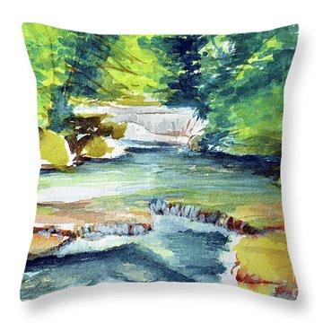 Little Falls Throw Pillow
