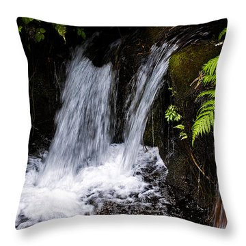 Little Falls Throw Pillow by Christopher Holmes