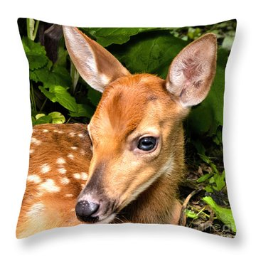 Little Fawn Throw Pillow