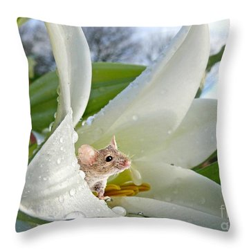 Little Field Mouse Throw Pillow