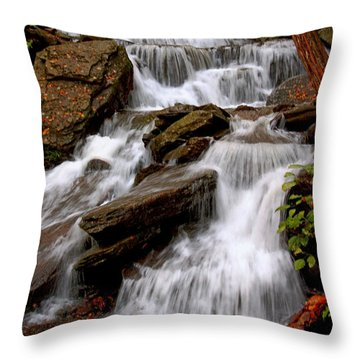 Throw Pillow featuring the photograph Little Four Mile Run Falls by Suzanne Stout