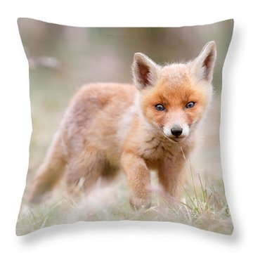 Little Fox Kit, Big World Throw Pillow by Roeselien Raimond