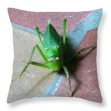 Throw Pillow featuring the photograph Little Grasshopper by Denise Fulmer