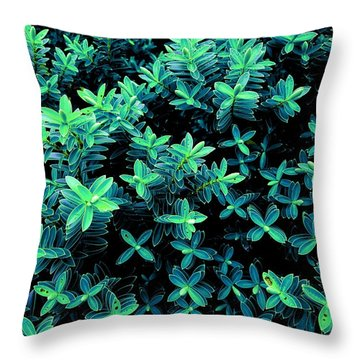 Little Green Crosses Throw Pillow