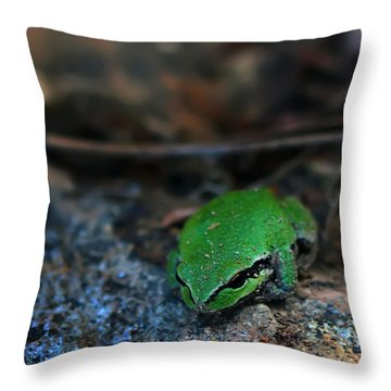 Little Green Frog Throw Pillow