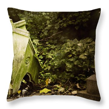Throw Pillow featuring the photograph Little House In The Woods by Helga Novelli