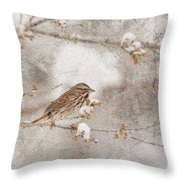 Little House Sparrow Throw Pillow
