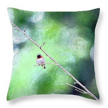 Throw Pillow featuring the photograph Little Hummer by Lila Fisher-Wenzel