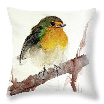 Little Throw Pillow