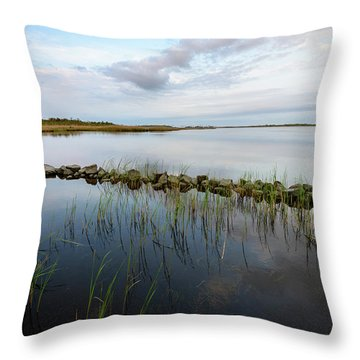 Little Jetty Throw Pillow
