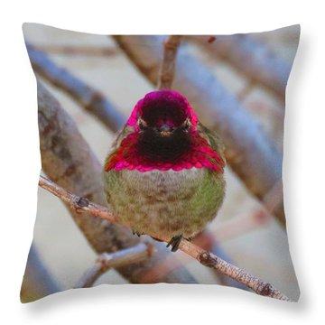 Little Jewel All Aglow Throw Pillow