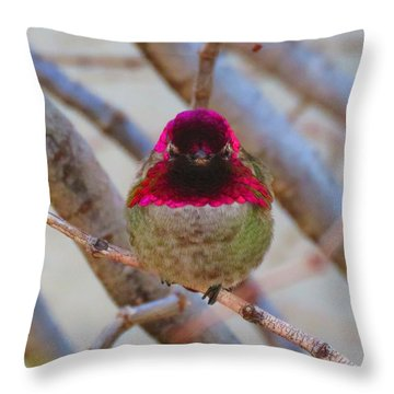 Little Jewel All Aglow Throw Pillow