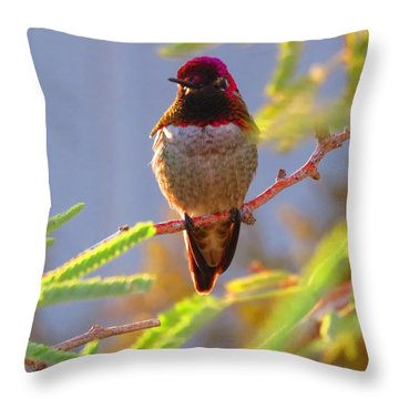 Little Jewel With Wings Fourth Version Throw Pillow