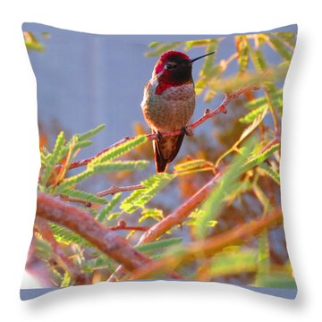 Little Jewel With Wings Throw Pillow