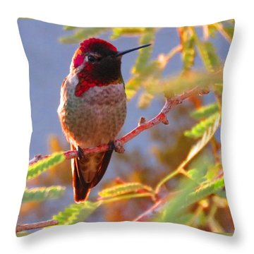 Little Jewel With Wings Second Version Throw Pillow