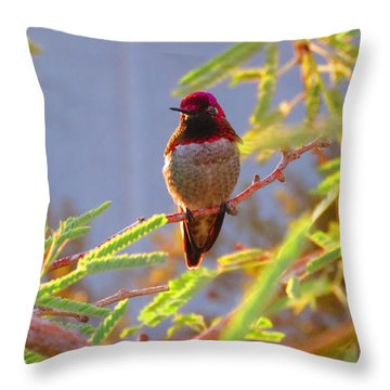Little Jewel With Wings Third Version Throw Pillow