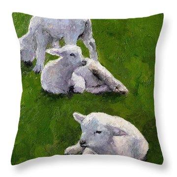 Little Lambs Throw Pillow