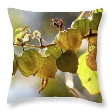 Little Lanterns Throw Pillow