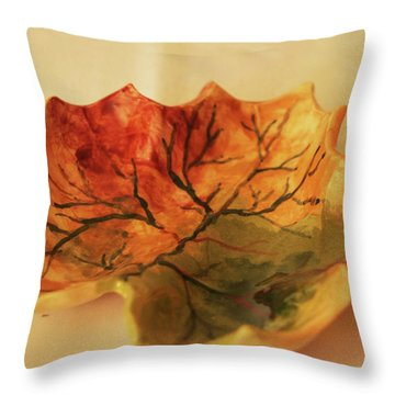 Throw Pillow featuring the photograph Little Leif Dish  by Itzhak Richter