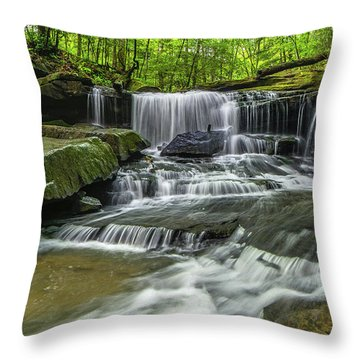 Little Mudlick Falls Throw Pillow by Ulrich Burkhalter