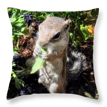 Little Nibbler Throw Pillow