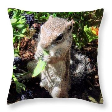 Little Nibbler Throw Pillow