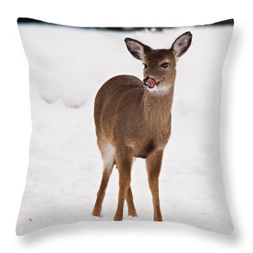 Throw Pillow featuring the photograph Little One by Angel Cher