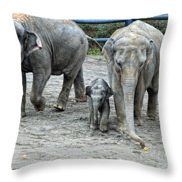 Little One Throw Pillow by Shari Nees