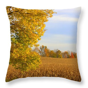 Little Orange Man Throw Pillow