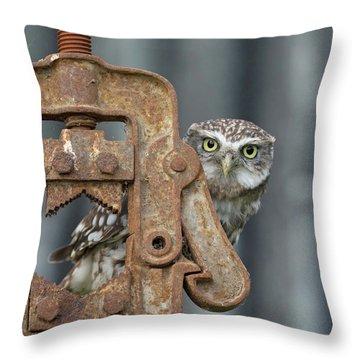 Little Owl Peeking Throw Pillow