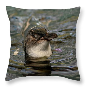 Little Penguin In The Water Throw Pillow