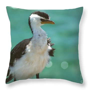 Little Pied Cormorant Throw Pillow