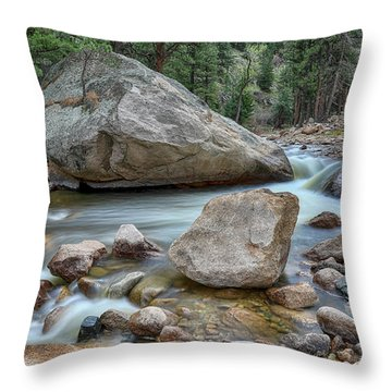 Little Pine Tree Stream View Throw Pillow by James BO Insogna