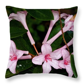 Little Pinks Throw Pillow by Christopher Holmes