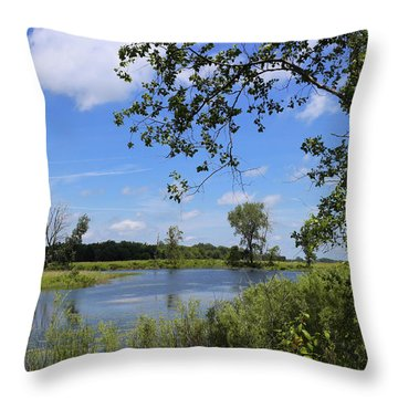 Little Prairie Oasis Throw Pillow