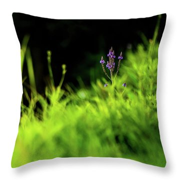Throw Pillow featuring the photograph Little Purple Flower by Onyonet  Photo Studios